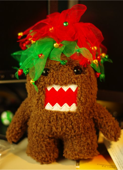 festive domo enjoys your company