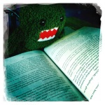 domo relaxes with a nice book